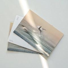 6월 고래 바다 엽서