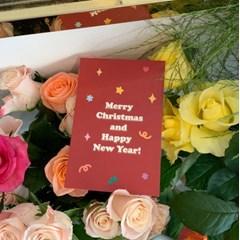 튤립 인 크리스마스 - 엽서 3종
