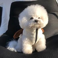 [mungmoong] 보아털 플리스 강아지 자수 베스트 (화이트)