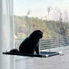 [그레이독] 고양이 윈도우해먹