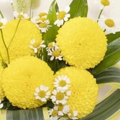 꽃선물 퐁퐁국화 꽃다발 (생화, 전국택배)