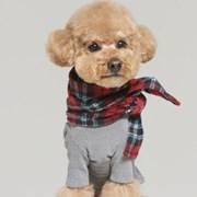 강아지 겨울옷 스펀지 올인원 5color