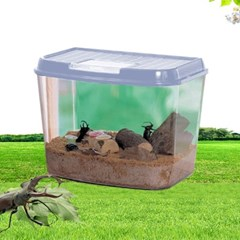 아이리스 곤충채집통/사육통/곤충상자/대형CY-3L 블루 블랙