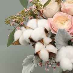 꽃선물 핑크 목화 꽃다발 L (생화, 전국택배)