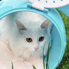 예펫 강아지 고양이 잠수함 이동가방 이동장 숨숨집