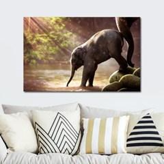 풍수인테리어 캔버스액자 아기 코끼리