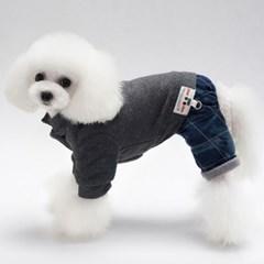 도그베이비 올인원 애견옷/ 겨울 강아지옷