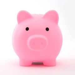 핑크 젤리 돼지저금통(중)/신년선물 사은품 저금통