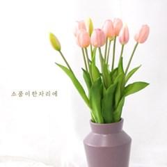 프리미엄 핑크 튤립 조화(5p)