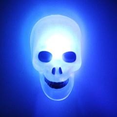 LED점등 호박 윈도우큐방접착