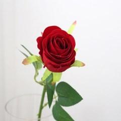 장미꽃 조화 로즈데이 성년의날 프로포즈 로맨틱 한송이 장미