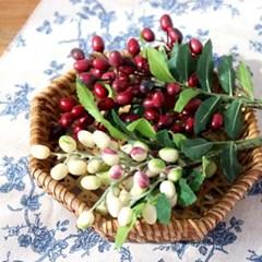 올리브 가지 조화 열매