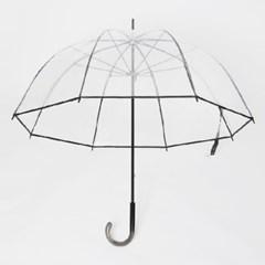 PARACHASE 파라체이스 1100 여성 투명 아치형 장우산 - 4컬러