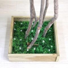 인조나무 조화나무 인테리어조화 내츄럴 자작나무 190 사방형