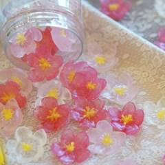 제주벚꽃휴대용비누