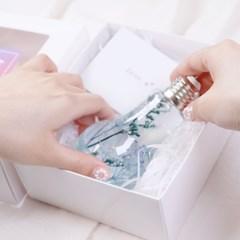 하바리움 무드등 만들기 DIY 3종 HAGT 프리저브드플라워만들기