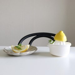 홈카페 레몬 쥬서 스퀴저