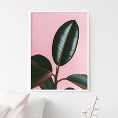 스위트리프 식물 액자 인테리어 그림