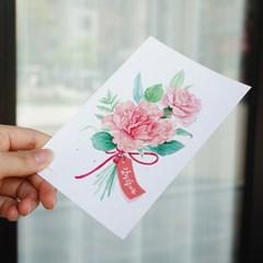엽서] 코랄 카네이션 (감사합니다)