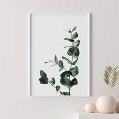 미니멀유칼립투스 식물 액자 나뭇잎 그림