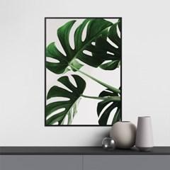 그린몬스테라 식물 액자 나뭇잎 그림