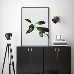 모어리프 식물 액자 나뭇잎 그림