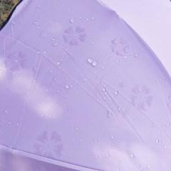 비오면 꽃피는 벚꽃우산 8우산살 핑크 CH1567179