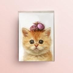플라워포켓 고양이 스탠딩카드