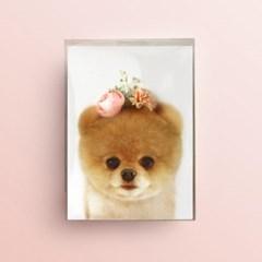 플라워포켓 강아지 스탠딩카드