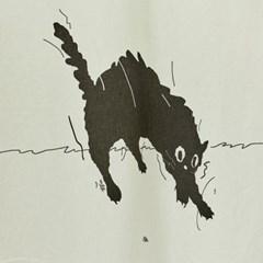 일상그림 패브릭 포스터 'Scary cat'
