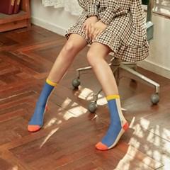 비비드 블럭배색 시스루 패션양말 BIZ_033