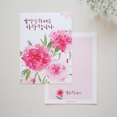 핑크 카네이션 엽서