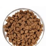 세븐아워 스킨케어(피부/모질) 강아지 사료 4.8kg
