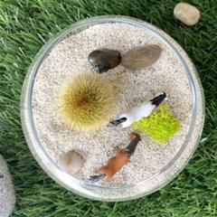 나만의 테라리움 미니 다육 DIY 키트 - 언덕 위 초원