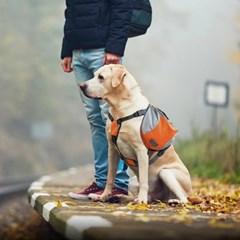 펫테일 강아지 하네스 가방 중대형견 백팩 산책가방