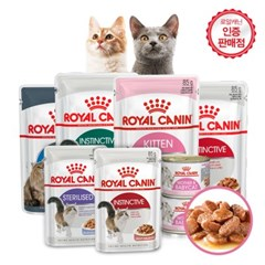 [로얄캐닌] 고양이사료 에이징 12세이상 젤리파우치 85g 노령묘용