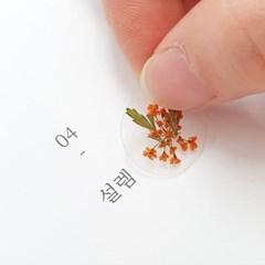 압화 미니 스티커_레이스플라워 오렌지