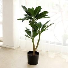 아가베 나무 조화 105cm