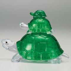 거북이 가족