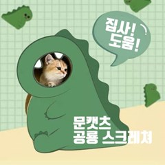 [MLCC]  고양이 공룡 스크래쳐