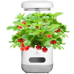 에코박스 LED 수경재배기 식물재배 TT