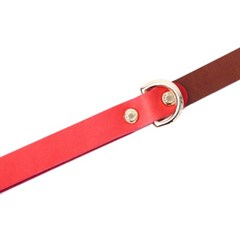 CLASSIC LEATHER LEASH RUSSIAN RED