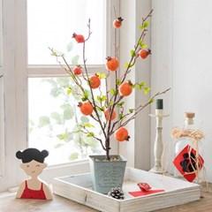 [메리고홈] 행운의 석류 열매 화분 CFK148
