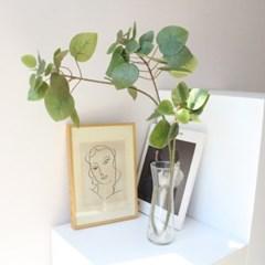 코인 나무 조화나무가지 장식
