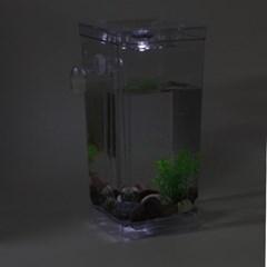 LED 자동청소어항 미니 물고기 구피 열대어 수조 세트