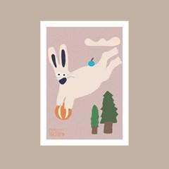 서커스 토끼