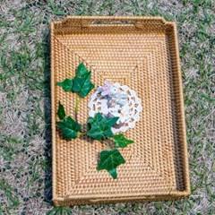 시원함을 전하는 라탄 트레이 원형 사각형