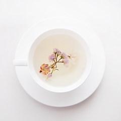 [꽃을담다]Original 벚꽃꽃차