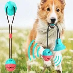 흡착형 터그 놀이 강아지 잔안감(원형 럭비공 선택)