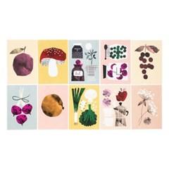 달링클레멘타인 PICKLES 카드세트